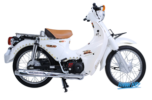Xe Cub 81 Thailand cao cấp màu trắng