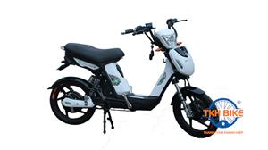 Xe đạp điện SAMURAI DK